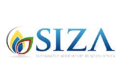 Fruit SA_Siza