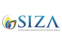 www.siza.co.za