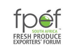 www.fpef.co.za